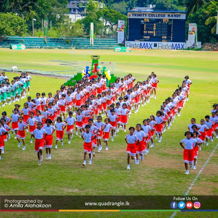 HCK_PRIMARY_SPORTSMEET_2019_DRILLDISPAY (193)