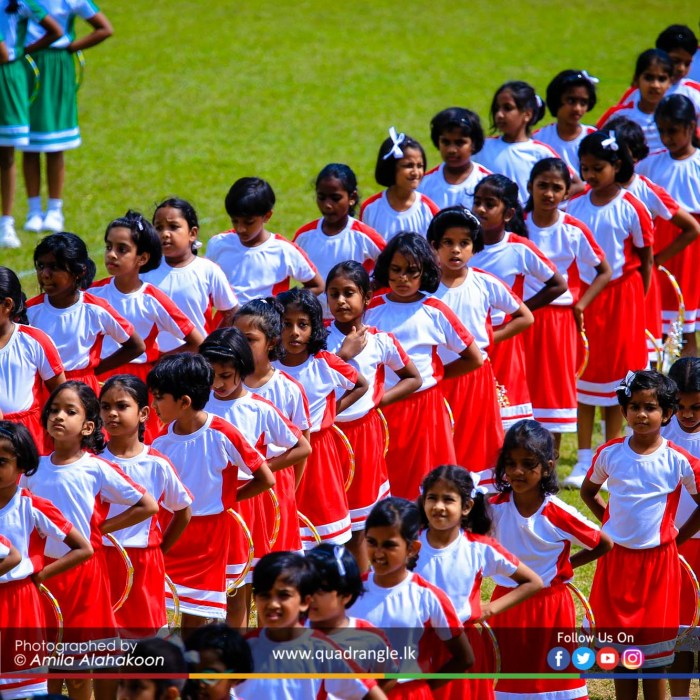 HCK_PRIMARY_SPORTSMEET_2019_DRILLDISPAY (205)