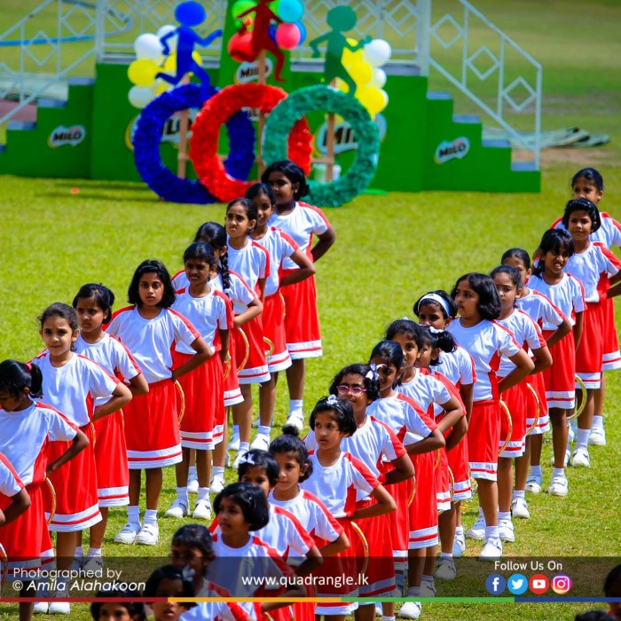 HCK_PRIMARY_SPORTSMEET_2019_DRILLDISPAY (208)