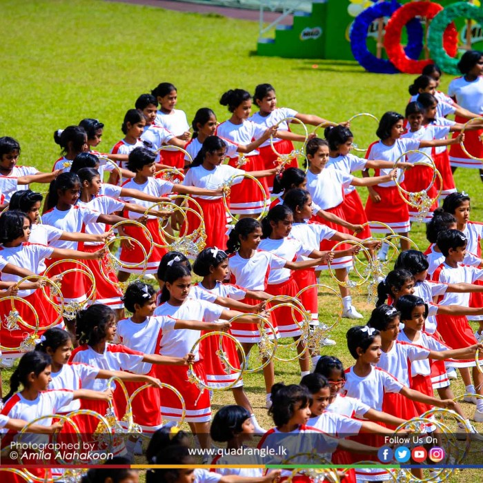HCK_PRIMARY_SPORTSMEET_2019_DRILLDISPAY (209)