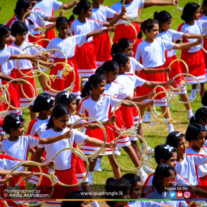 HCK_PRIMARY_SPORTSMEET_2019_DRILLDISPAY (210)