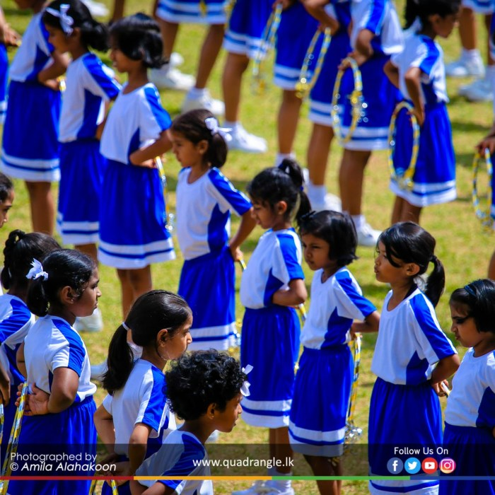 HCK_PRIMARY_SPORTSMEET_2019_DRILLDISPAY (221)