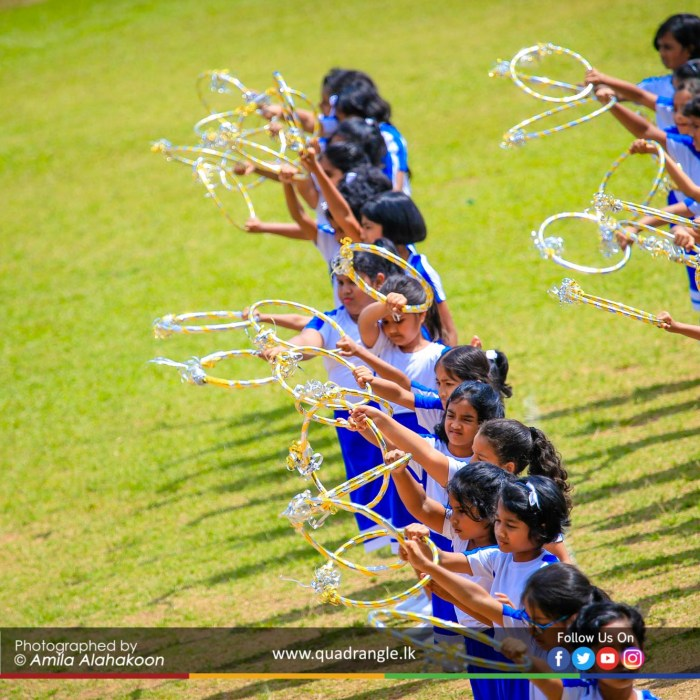 HCK_PRIMARY_SPORTSMEET_2019_DRILLDISPAY (231)