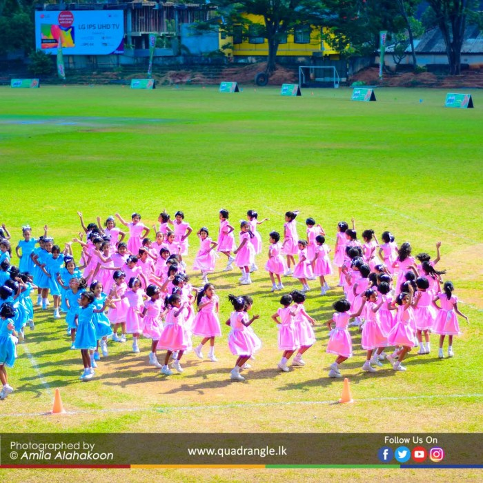 HCK_PRIMARY_SPORTSMEET_2019_DRILLDISPAY (26)