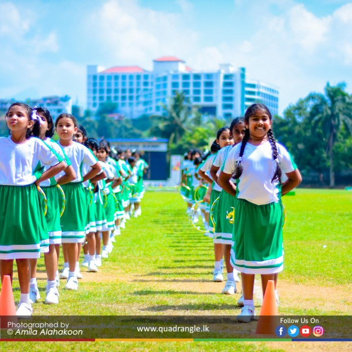 HCK_PRIMARY_SPORTSMEET_2019_DRILLDISPAY (45)