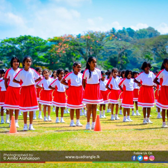 HCK_PRIMARY_SPORTSMEET_2019_DRILLDISPAY (49)
