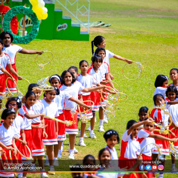 HCK_PRIMARY_SPORTSMEET_2019_DRILLDISPAY (62)