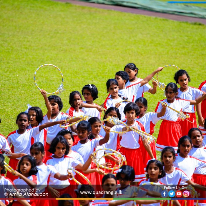 HCK_PRIMARY_SPORTSMEET_2019_DRILLDISPAY (65)