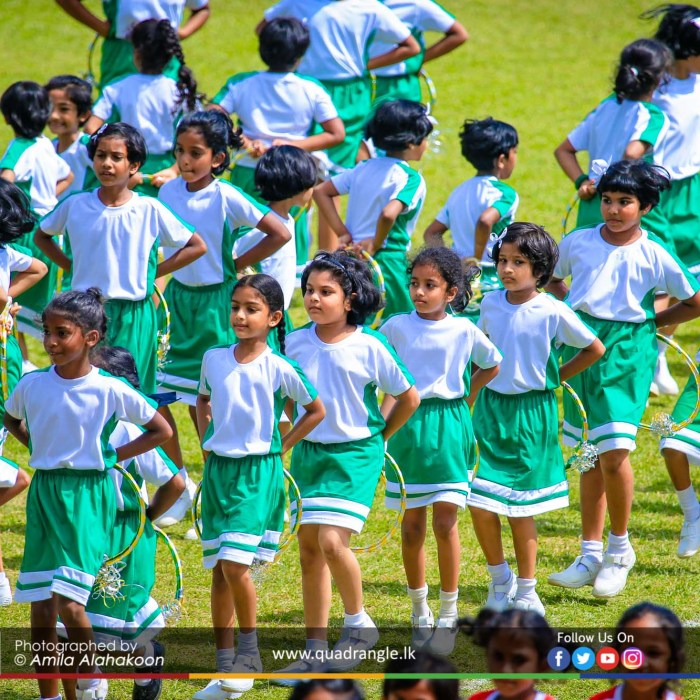 HCK_PRIMARY_SPORTSMEET_2019_DRILLDISPAY (75)