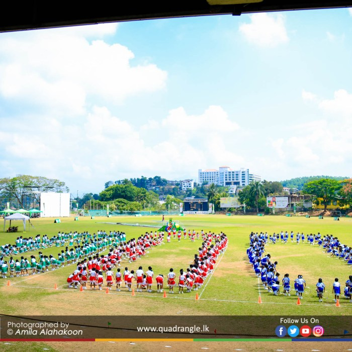 HCK_PRIMARY_SPORTSMEET_2019_DRILLDISPAY (79)