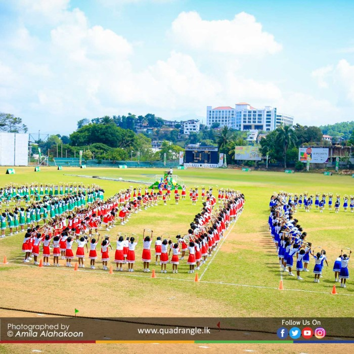 HCK_PRIMARY_SPORTSMEET_2019_DRILLDISPAY (81)