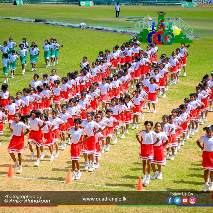HCK_PRIMARY_SPORTSMEET_2019_DRILLDISPAY (88)