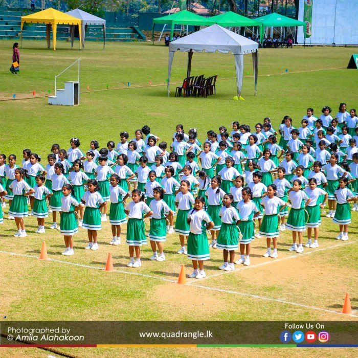 HCK_PRIMARY_SPORTSMEET_2019_DRILLDISPAY (93)