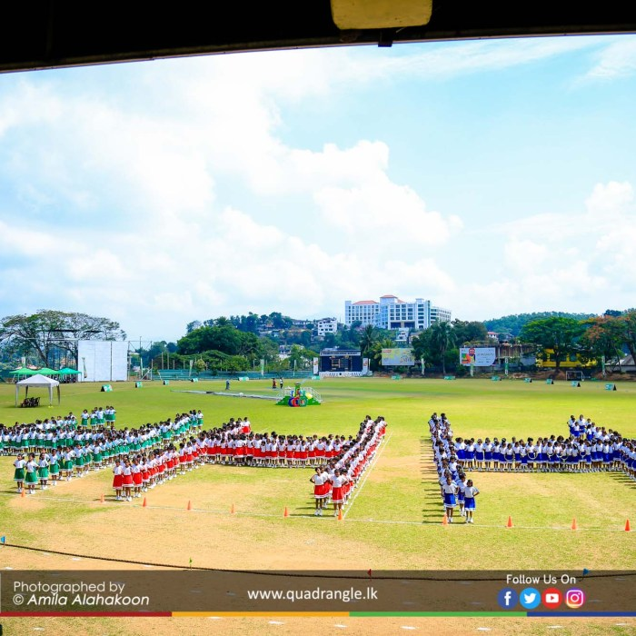 HCK_PRIMARY_SPORTSMEET_2019_DRILLDISPAY (94)
