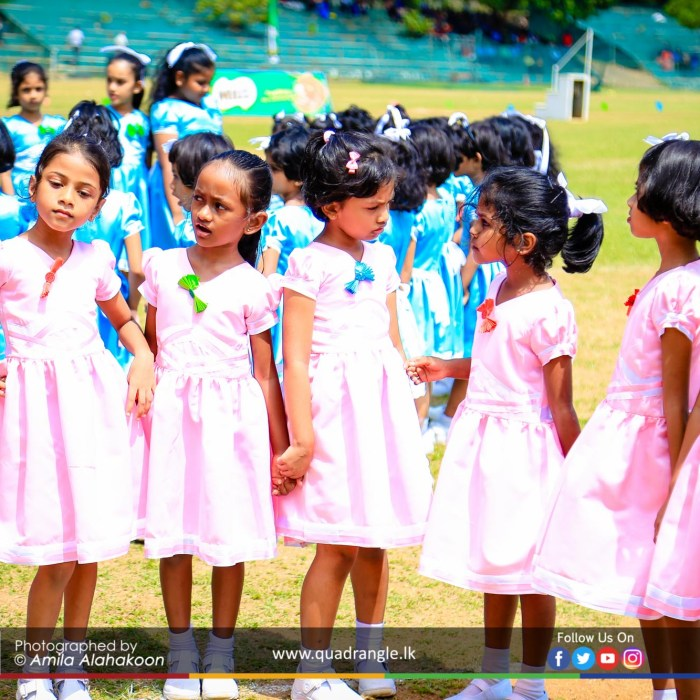 HCK_PRIMARY_SPORTSMEET_2019_EVENTS (154)