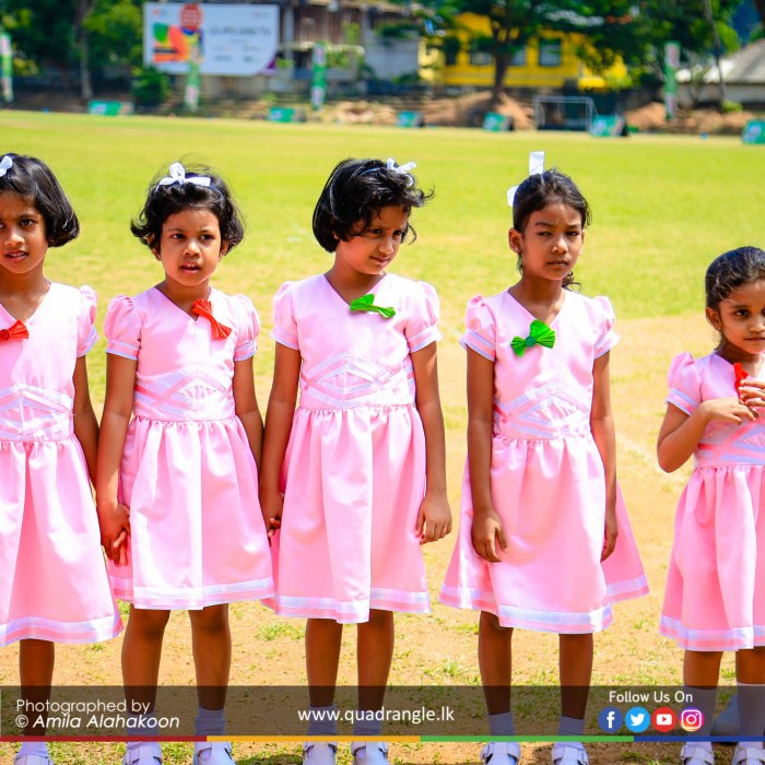 HCK_PRIMARY_SPORTSMEET_2019_EVENTS (157)