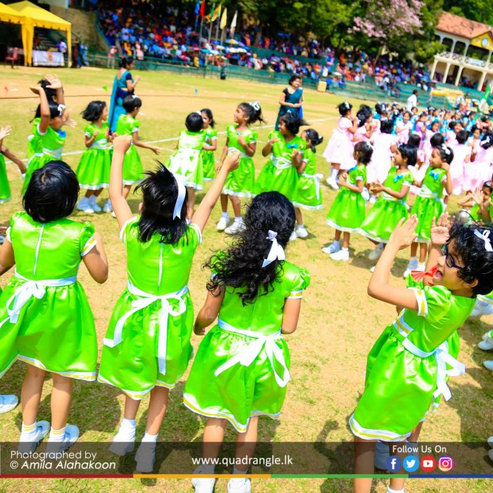 HCK_PRIMARY_SPORTSMEET_2019_EVENTS (164)