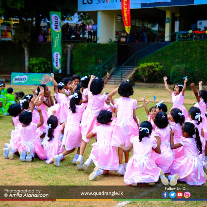 HCK_PRIMARY_SPORTSMEET_2019_EVENTS (193)