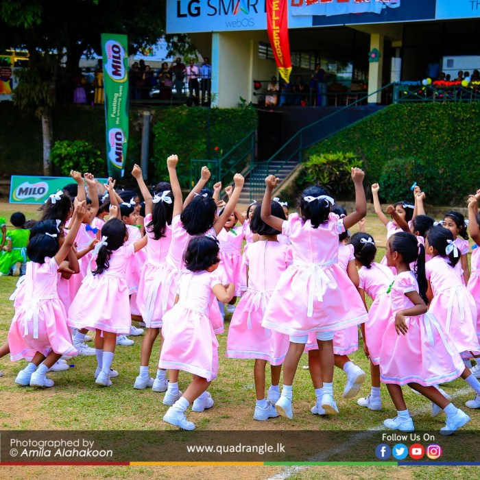 HCK_PRIMARY_SPORTSMEET_2019_EVENTS (194)