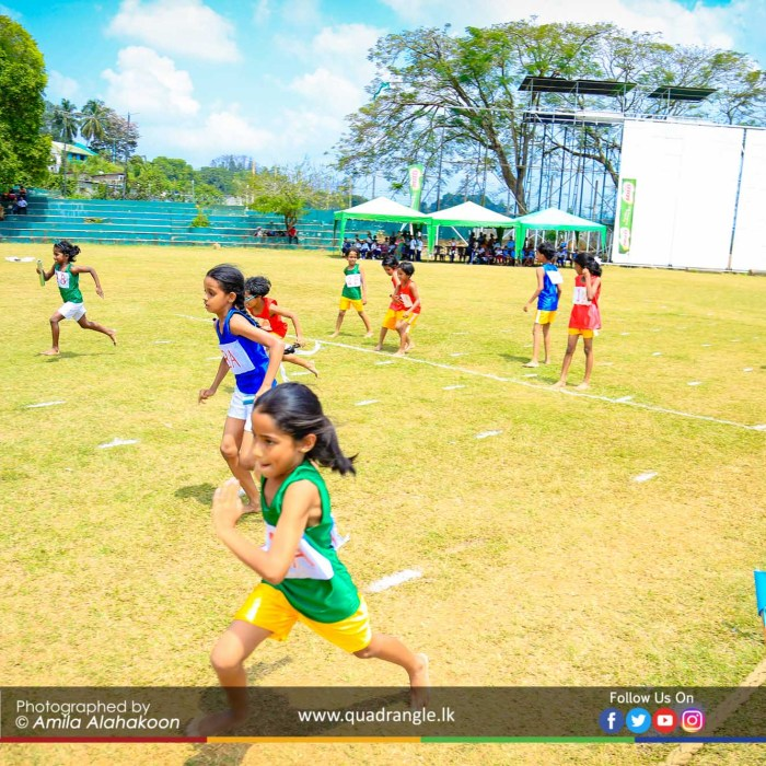 HCK_PRIMARY_SPORTSMEET_2019_EVENTS (213)