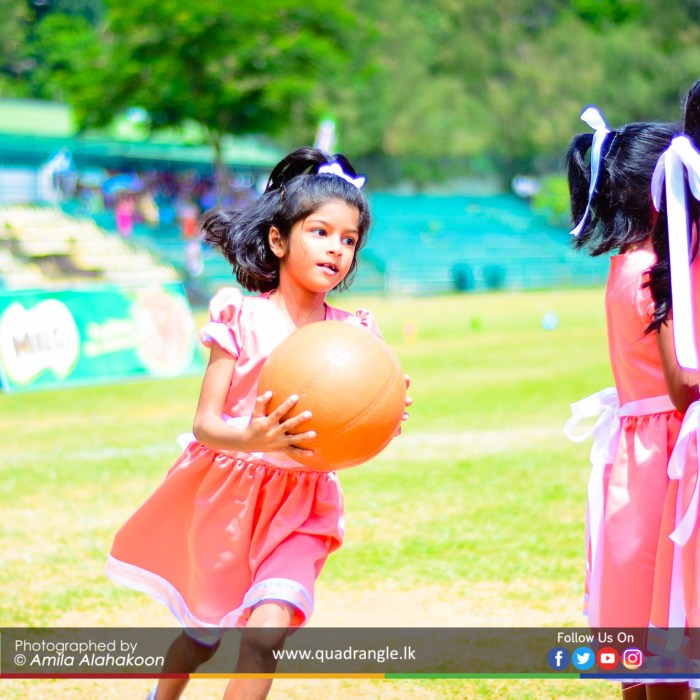 HCK_PRIMARY_SPORTSMEET_2019_EVENTS (61)