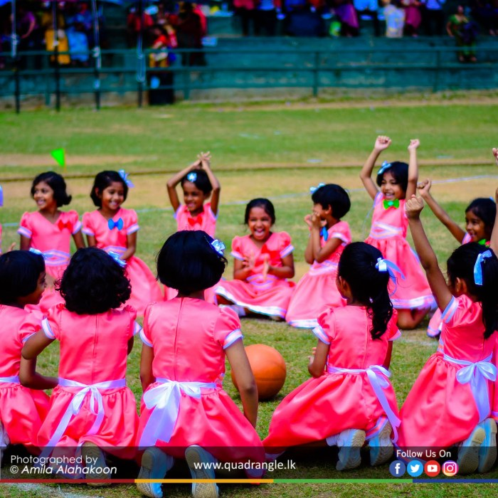 HCK_PRIMARY_SPORTSMEET_2019_EVENTS (73)