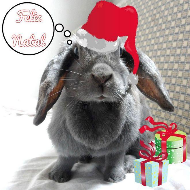 Feliz Natal-002
