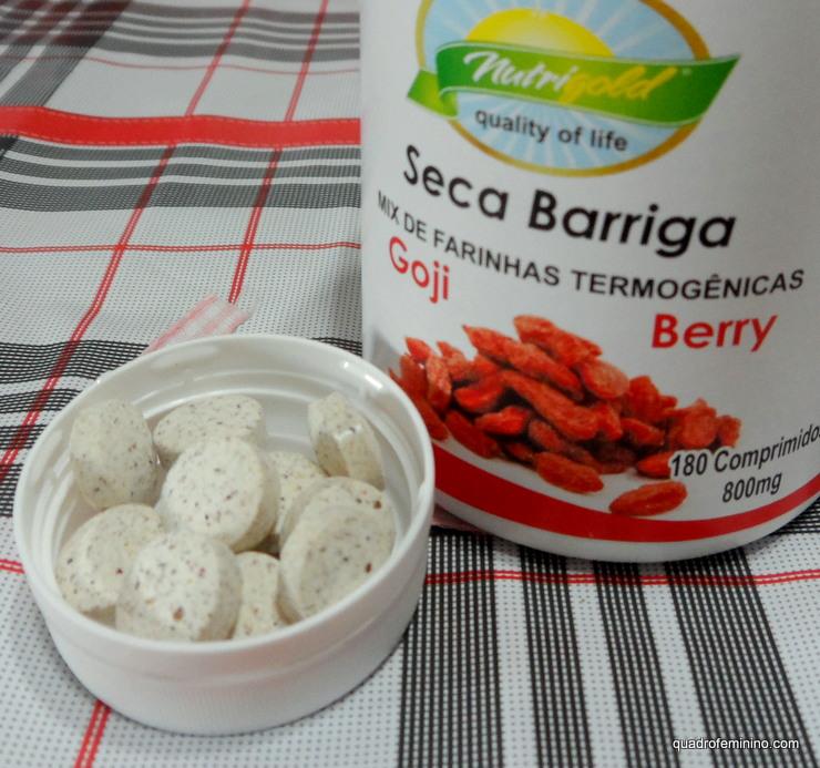 Farinha Seca Barriga Goji Berry da Nutri Gold (2)