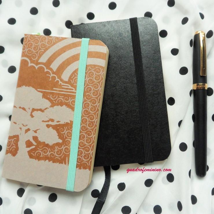 Cadernos de bolso Moleco