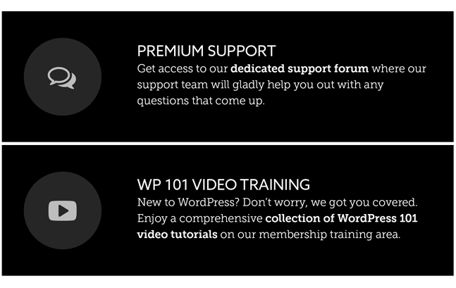Modules WordPress Theme