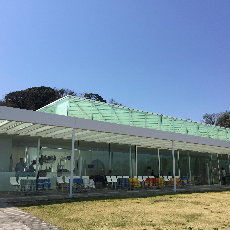 横須賀美術館『横須賀ゆかりの友禅作家 中村光哉』展に行ってきました!