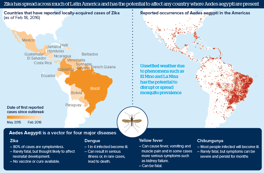 """<img src=""""mosquitoborneh.jpg"""" alt=""""an iconographis showing mosquito-transmitted diseases in Latin America"""">"""