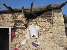 Karna Negi's cowshed was destroyed by the quake. His house is connected to this shed.