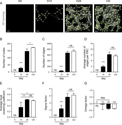 Source: https://journals.plos.org/plosbiology/article?id=10.1371/journal.pbio.1002515