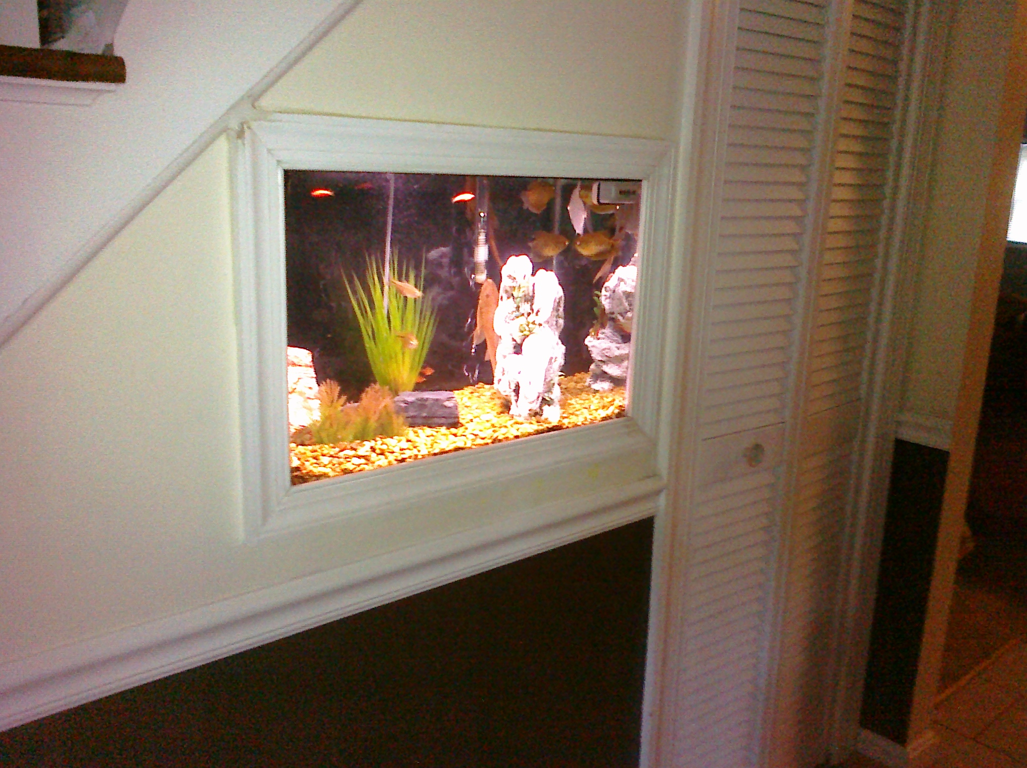 Custom fish tank wall inset by Qualis Construction