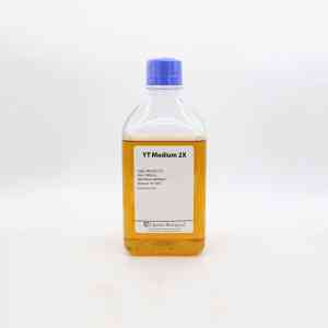 YT Medium 2X (1000mL) is a ready to use growth media for recombinant strains of E. coli