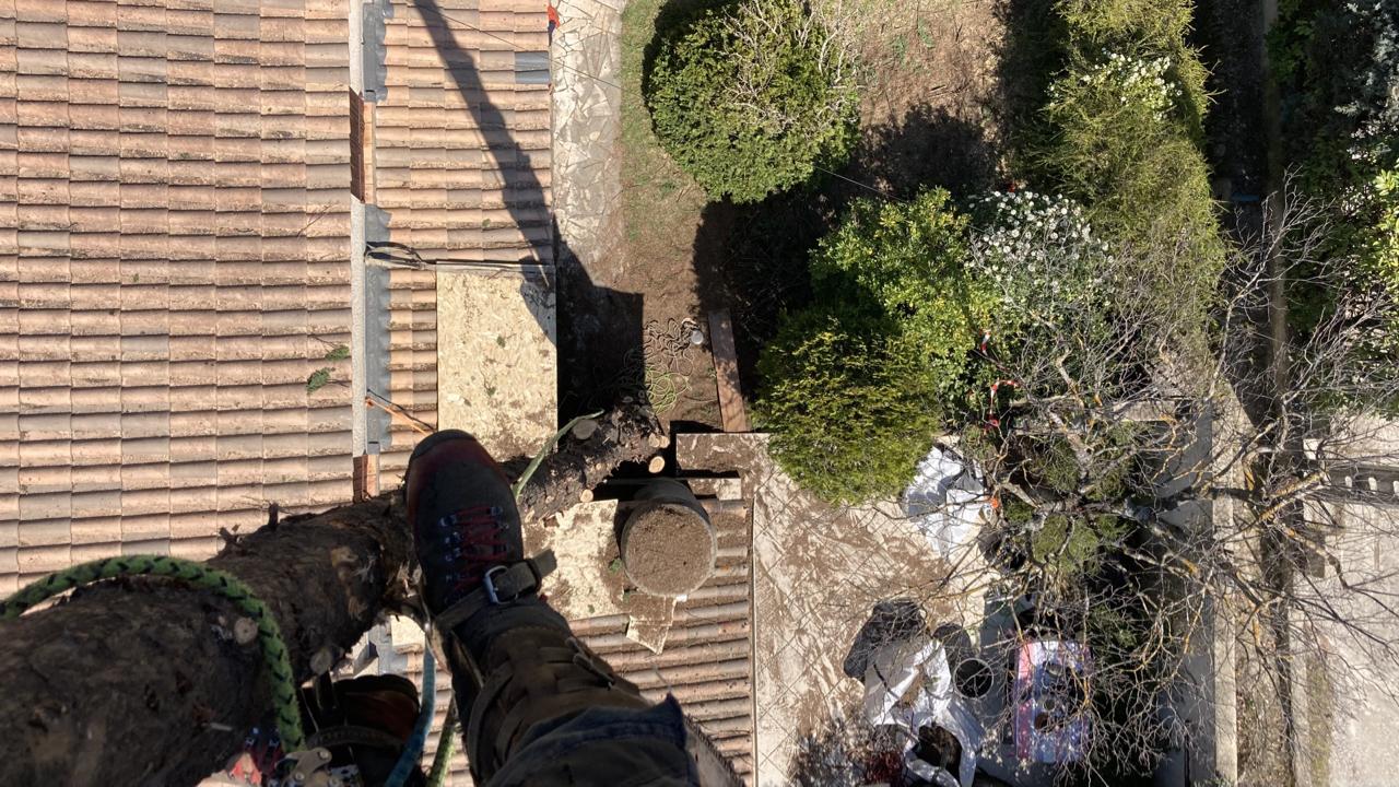 Quantacav-grimper-zone de travail arboriste