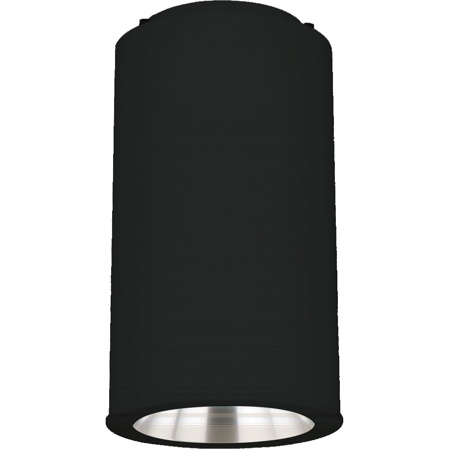 Pl601 Led Ceiling Or Pendant Mount Cylinder Black White Or Silver Gray Quantalight