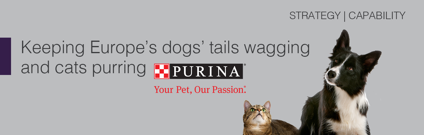 Nestle Purina Case Study