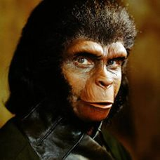 The Planet of the Apes: Zira (Xenobiological Anthropologist)