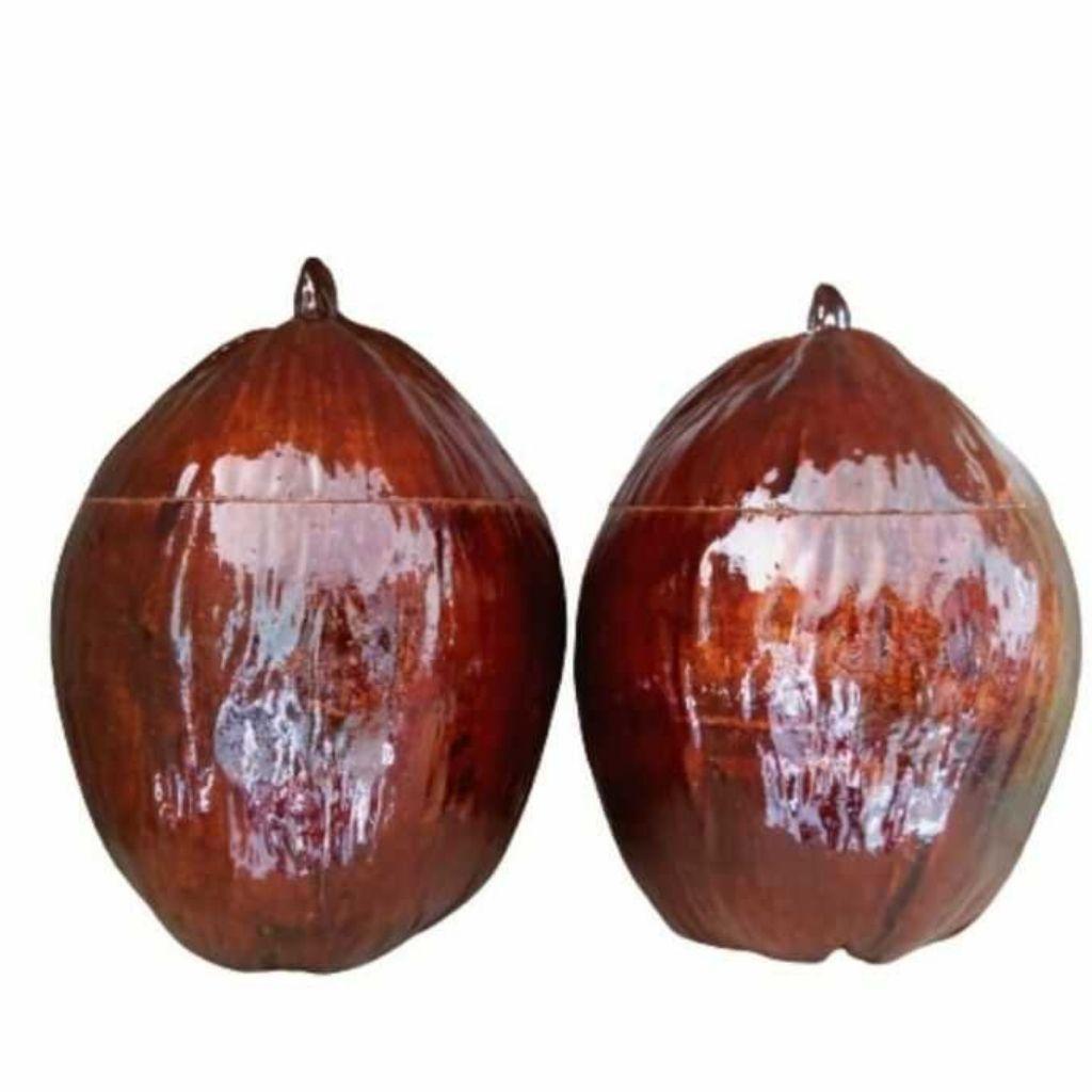 Vỏ Bình Trà Trái Dừa Có Sơn Bóng Màu Nâu Đỏ Và Bình Trà 1000 - 1200ml