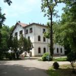 Stirbei Palace, Buftea