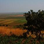giurgiu landscape