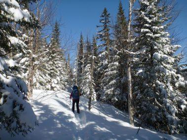 Ski de randonnée nordique Demie-Traversée de Charlevoix 3