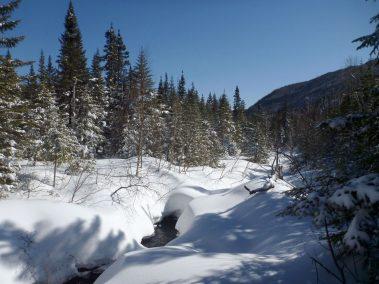 Ski de randonnée nordique Demie-Traversée de Charlevoix 5
