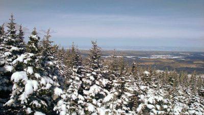 Ski-raquette Parc Massif Sud 2