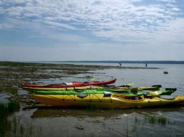 Kayak de mer Découverte Ile d'Orléans 07