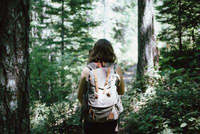 Randonnée pédestre guidée au parc national de la Jacques-Cartier 01