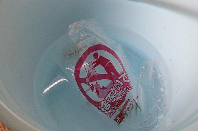 袋の水をバケツに移す