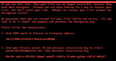 What is a Petya Ransomware?